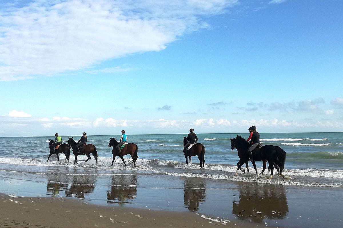 Ausritt mit dem Pferd am Strand